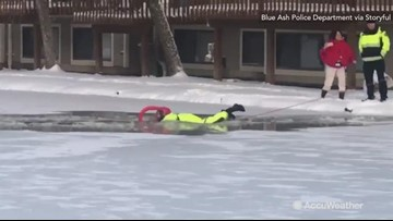 Dog rescued after falling through frozen pool