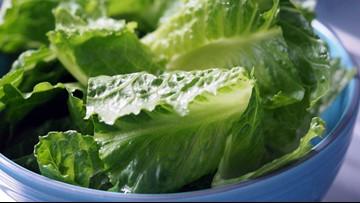 CDC alert: Avoid all romaine lettuce due to E. coli outbreak