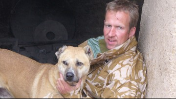 This veteran reunites soldiers with beloved street dogs they left behind on the front lines