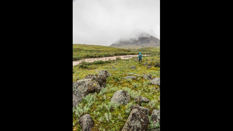A young hiker explores the vast, remote wilderness of Gates of the Arctic National Park(Photo by inDesign Ethos / Shutterstock.com)