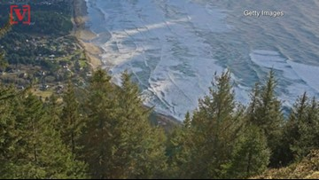 College Student Dies From 100-Foot Fall While Taking Pictures at Scenic Oregon Overlook