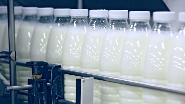 FDA Gets Push from Senators to Remove Dairy Label from Plant-Based Products