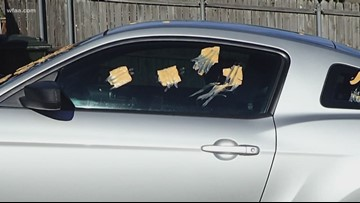 Processed cheese prank is no match for Carrollton CSI