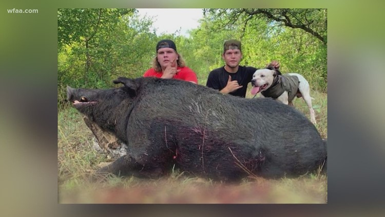 Central Texas duo kills 460-pound feral hog in Proctor