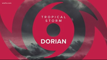 Dorian, still strengthening from Tropical Storm to Hurricane, approaches Florida