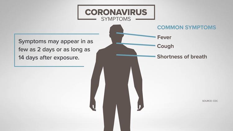 Coronavirus: Symptoms