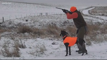 Hunting pheasant in cold, icy South Dakota