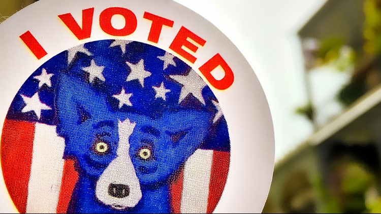 How to register to vote for Louisiana's October Election