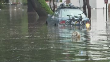 Cantrell declares state of emergency amidst flooding, storms in New Orleans