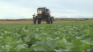 Louisiana farmers to receive help with pesticide disposal