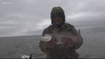 Venice a redfish hot spot even in cold weather