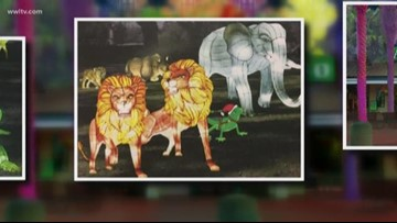 Audubon Zoo unveils new holiday tradition 'Audubon Zoo Lights'