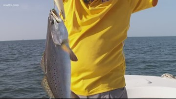 Fish & Game: Speckled trout are back, if you know where to go