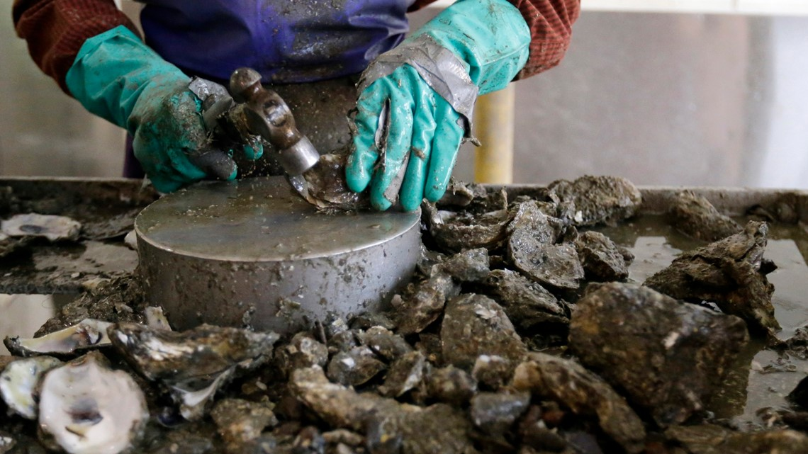 Gulf Coast seafood biz slammed by freshwater from floods