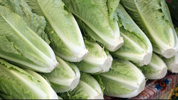 CDC: Nine more sick from romaine lettuce, one in Louisiana