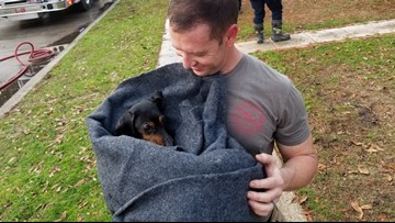 Dog given oxygen, rescued from Slidell house fire