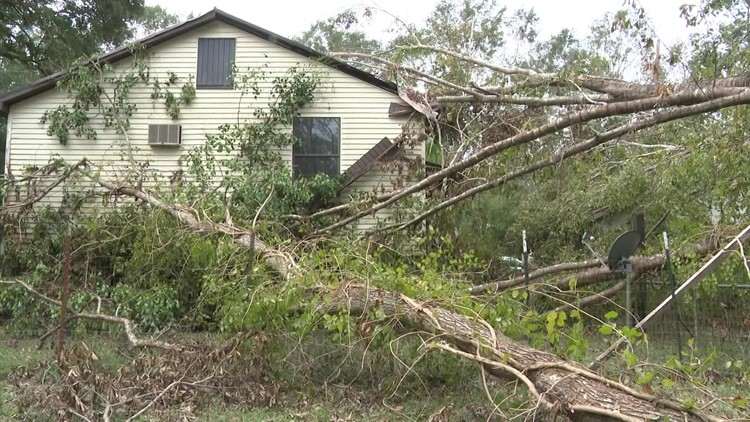 Several trees fell on her Ponchatoula home and now she needs help
