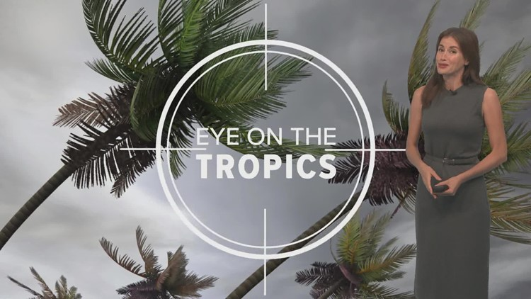 Sunday night tropical update: All quiet to start August