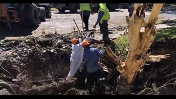 'I had a river:' Water leaks turn into 6-foot deep, 20-foot wide pit in woman's lawn, takes down tree