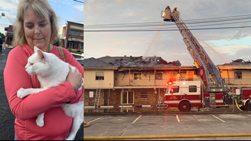 Cat reunited with worried owner during live interview outside Kenner fire