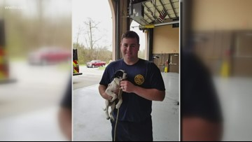 Firefighters rescue puppy from Harvey canal