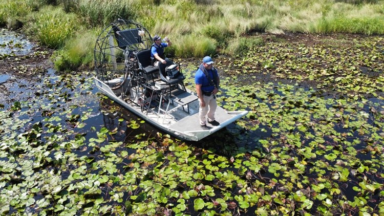 Slidell man killed by alligator after Hurricane Ida named