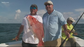 Fish & Game: Red Snapper season ends after Labor Day weekend