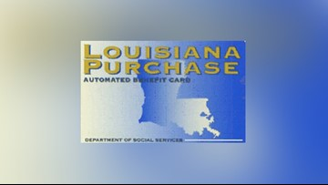 SNAP recipients can apply for benefits for food lost due to Tropical Storm Olga