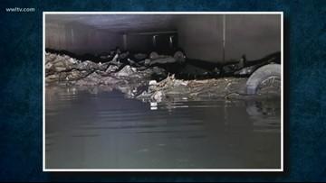 Car found in underground canal in New Orleans