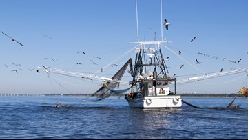 Federal safety net proposed for fishermen after natural disasters