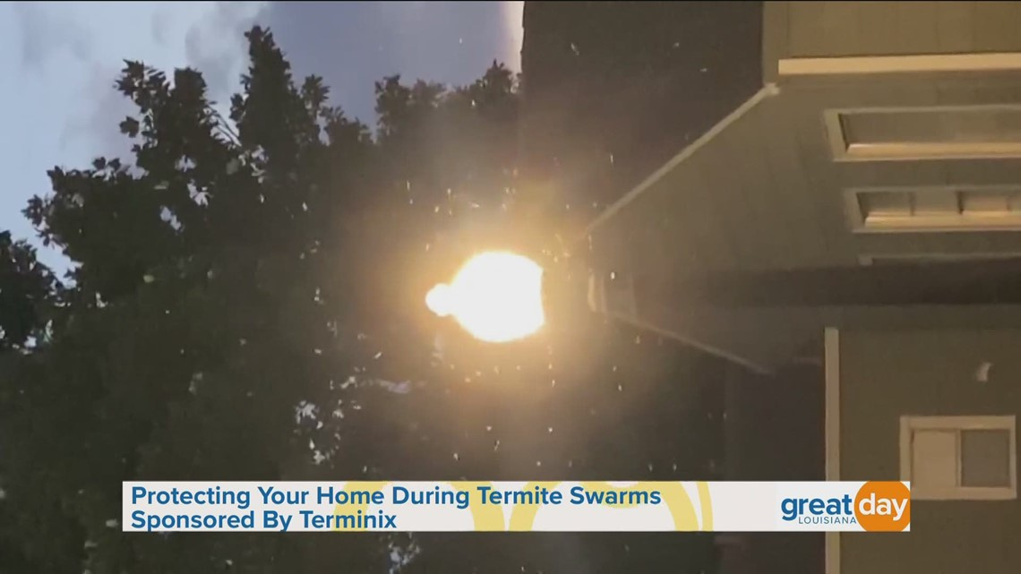 Protect your home from termites with Terminix