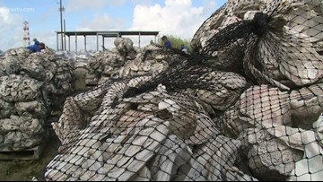 Coalition using oyster shells to prevent land loss