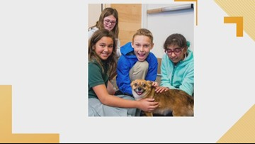 LASPCA Offers Summer Camps for all Ages