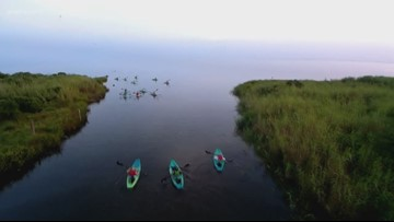 Fish & Game: Kayaking down Cane Bayou in Lacombe