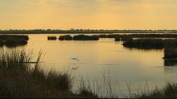 Louisiana gets $24.8 million in grants for coastal restoration