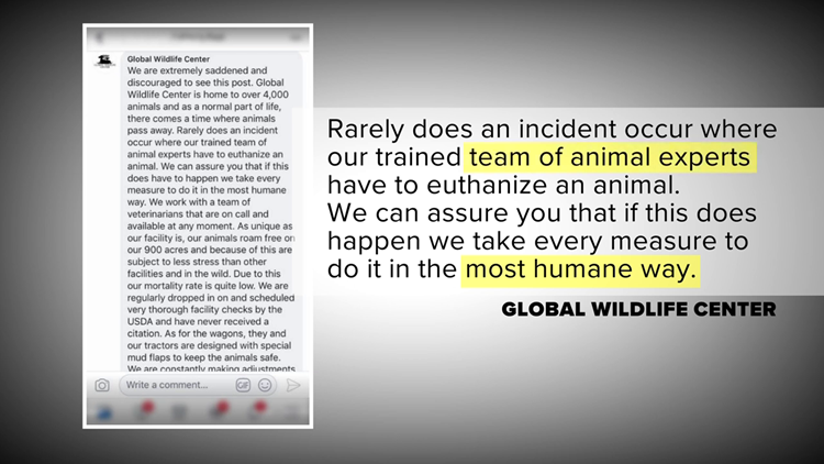 Global Wildlife - team of animal experts