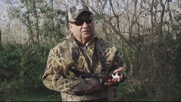 Fish and Game: Hunting wood ducks