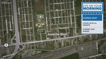 Juvenile shot in New Orleans East, police say