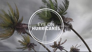 Eye on Hurricanes 2019: Special Report