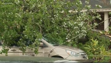 Storms knock down trees, power poles near Metairie school