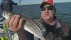 Fishing for World Series trout