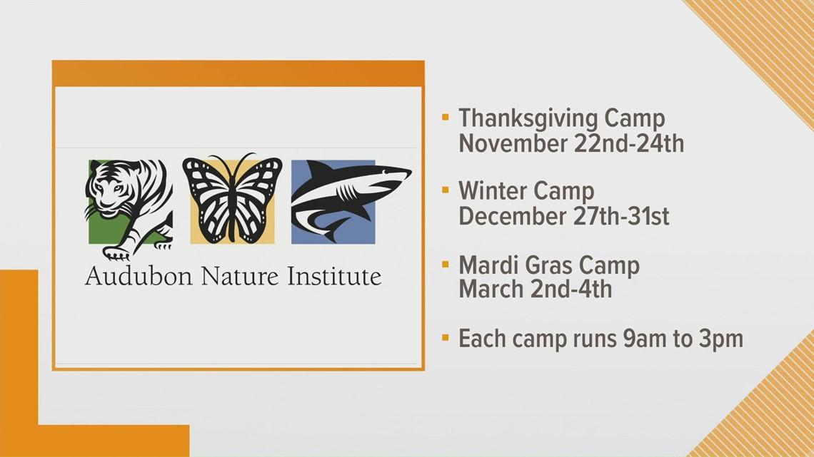 Holiday Education Camps return to Audubon Zoo