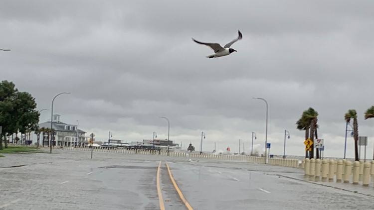 S&WB says New Orleans ready for Tropical Storm Cristobal